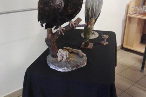 Kiállításmegnyitóval egybekötött kreatív foglalkozás